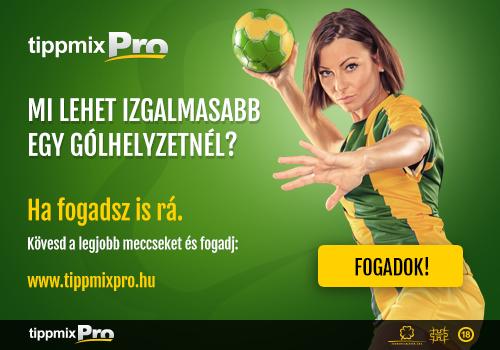 pop_up_banner_500x350_tmp_handball